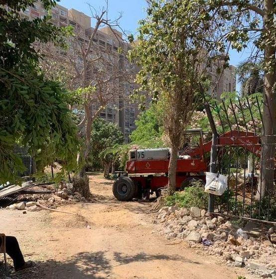 """مبادرة تدعو لوقف تجريف أشجار خمس نقاط بمصر الجديدة لصالح مشاريع """"الجيش"""""""