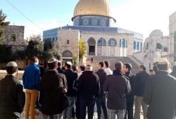 عشرات الصهاينة يقتحمون الأقصى صباح اليوم والاحتلال يعتقل 4 سيدات