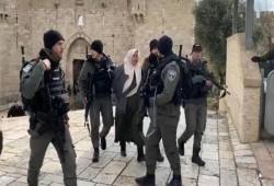 الاحتلال يعتقل مسنّة فلسطينية في الأقصى بزعم محاولة تنفيذ عملية طعن