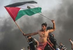 """""""#لا_لبصقة_القرن"""" و""""#تسقط_صفقة_القرن"""" يتصدران """"تويتر"""" رفضًا للتنازل عن حقوق الفلسطينيين"""