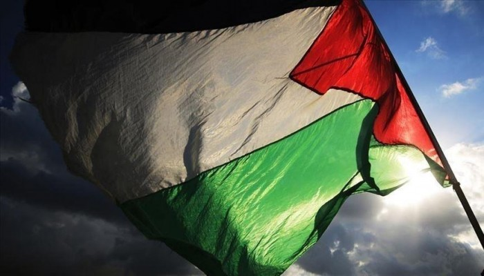 تعيين 3 أعضاء بلجنة تحقيق أممية في فلسطين المحتلة