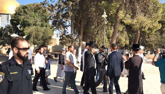 205 مستوطنين يقتحمون الأقصى بحراسة قوات الاحتلال