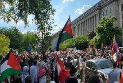 وقفة بمدينة بوسطن الأمريكية للتضامن مع الأسرى الفلسطينيين بسجون الاحتلال