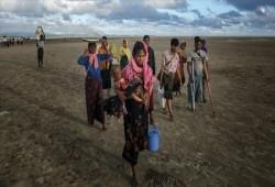 الأمم المتحدة: جيش ميانمار يجهز  لجرائم جديدة ضد مسلمي الروهينجا