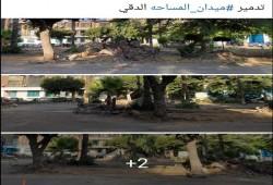 نظام الانقلاب يبدأ إزالة أشجار ميدان المساحة بالدقي